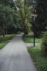 Moody Photo of the Road in a Park, Between Woods - Desaturated, Vintage Look