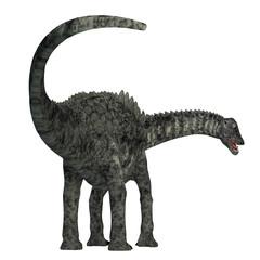 Ampelosaurus Dinosaur Tail - Ampelosaurus was a herbivorous sauropod dinosaur that lived in Europe during the Cretaceous Period.