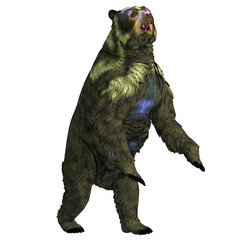 Arctodus Bear Rearing Up - Arctodus was an omnivorous short-faced bear that lived in North America during the Pleistocene Period.