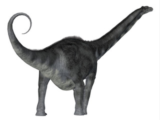 Argentinosaurus Dinosaur Tail - Argentinosaurus was a herbivorous sauropod dinosaur that lived in Argentina during the Cretaceous Period.