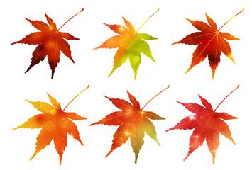 紅葉 もみじ 秋 アイコン