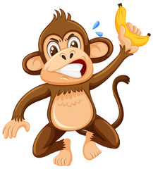 An angry monkey on white background