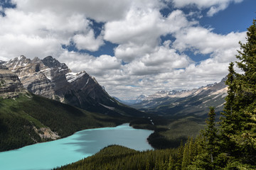 Panorama of Peyto Lake and dramatic landscape along the Icefields Parkway, Canada