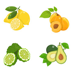 ropical fruits set, food, exotic fruits set, vegan food, various fruit, set of organic healthy food, natural gifts of nature, various natural and healthy fruit, flat design, vector graphics to design