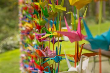 Curtain of Origami Cranes