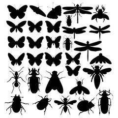 vector, isolated, silhouette of an insect, set