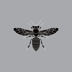 silhouette insect bee