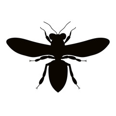 isolated, silhouette insect bee