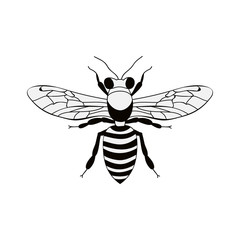 silhouette black and white bee insect