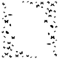 isolated, background with flying butterflies