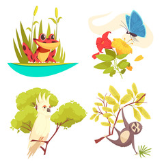 Animals Jungle Design Concept