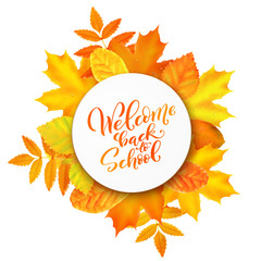 Welcome back to school hand-drawn lettering background.