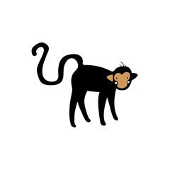 Cute monkey illustration on white background