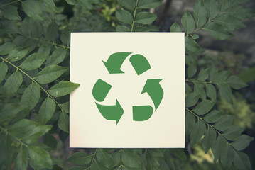 recycle symbol on green leaf background top view. eco and save the earth concept.