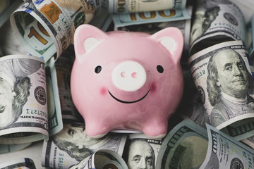 Piggy bank on money, concept for saving money.