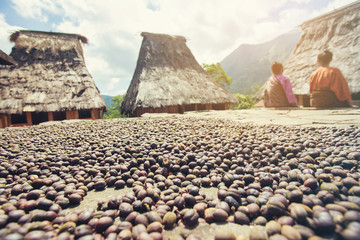Organic coffee drying on stone slabs in the Wologai traditional village near Kelimutu in East Nusa Tenggara, Indonesia.