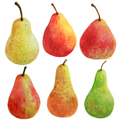 Ripe red yellow and green pear fruit painted with watercolor on white background