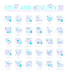 Set Blue Line Icons of Meat and Poultry