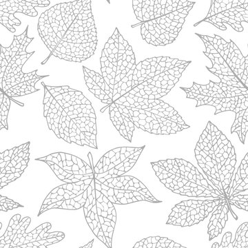 Vector autumn seamless pattern with oak, poplar, beech, maple, aspen and horse chestnut leaves of gray color on the white background. Fall ornament with detailed foliage.