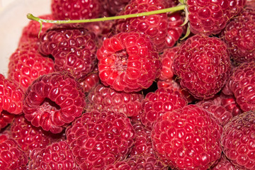 organic raspberries in a bowl . Raspberry fruit