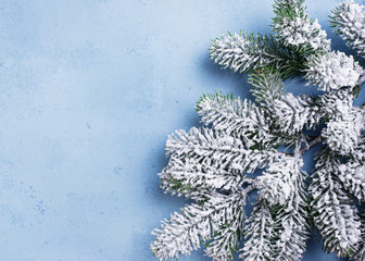 Christmas background with branch of tree