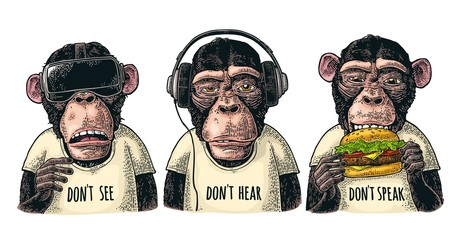 Three wise monkeys. Not see, not hear, not speak. Vintage engraving