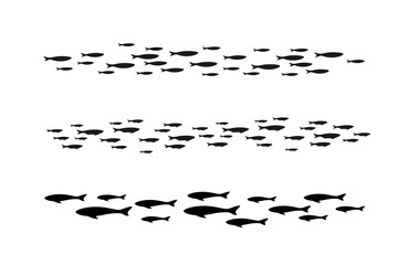 Colony of swiming sea or aquarium fishes. Group of silhouttes .