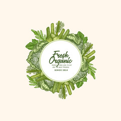 Green garden fresh vegetables round design template. Engraved  illustration. Vector illustration