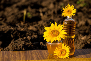 Glass honey jar and bottle of oil on wooden stand with ground background. Photo with copy space area for text
