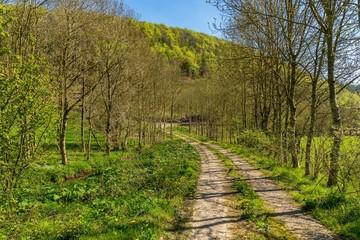 Rural road near Mainstone, Shropshire, England, UK
