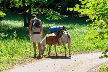 Eselwanderung in der WIldnis