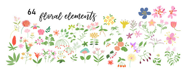 wild flower meadow illustration.vector floral elements collection. romantic hand drawn flowers and leaves collection. botanical elements collection. hand drawn floral doodles.