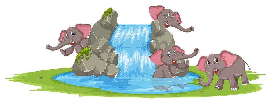 Elephant playing in the water