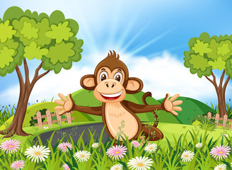 Spoed Foto op Canvas Lieveheersbeestjes Monkey in beautiful nature