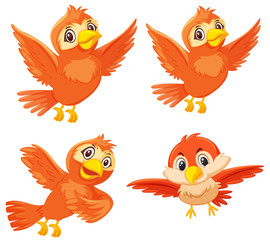 Set of cute orange birds