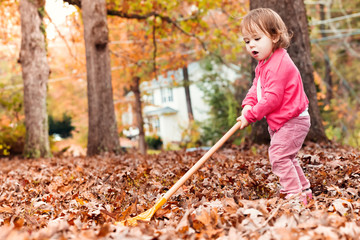 Toddler girl raking leaves in autumn outside