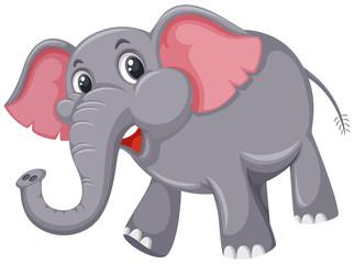 A cute elephant on white background