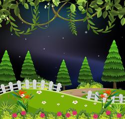 Park at night scene
