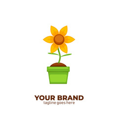 Florist shop store logo. Sun flower logo icon illustration vector