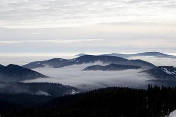 Mt Hood view three