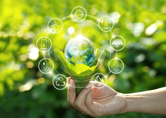 Hand holding light bulb against nature on green leaves with icons energy sources for renewable, sustainable development. Ecology concept. Elements of this image furnished by NASA. Wall mural