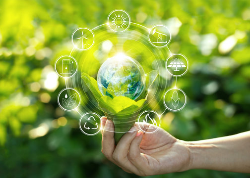 Hand holding light bulb against nature on green leaves with icons energy sources for renewable, sustainable development. Ecology concept. Elements of this image furnished by NASA.