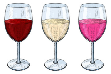 Glass of wine. Red, white and rose wine. Hand drawn sketch