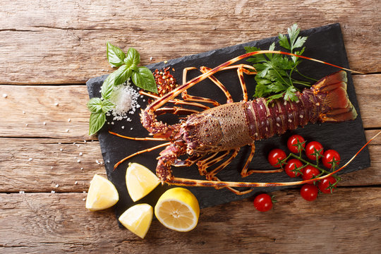Gourmet food: raw spiny lobster or sea crawfish with ingredients for cooking close up on a table. Horizontal top view