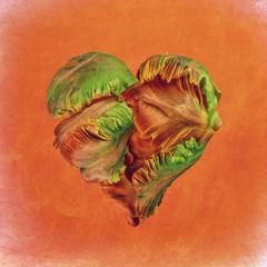 Flower Heart, heart-shaped flowers