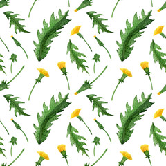 Watercolor seamless pattern of dandelion buds, flowers and leaves