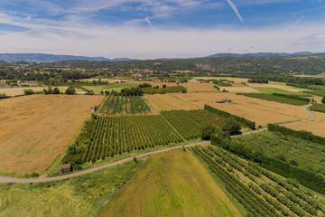 Luftbild Getreidefelder unfd Obstplantagen im Rhonetal