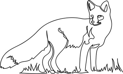 fox. Doodle. continuous sketch. one line