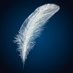 Vector white feathers collection, set of different falling fluffy twirled feathers, isolated on blue background. Realistic style, vector 3d illustration.