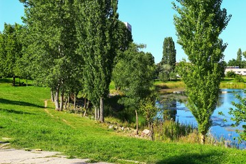 A landscape view of green trees and a lake in a city park during summer